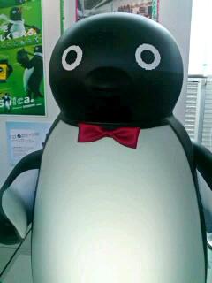 Suicaペンギンと鬼ごっこ