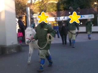 おうちに帰ろう!@上野動物園